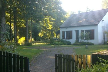 Petite maison indépendante 42m² - Saint-Ange-le-Viel - House