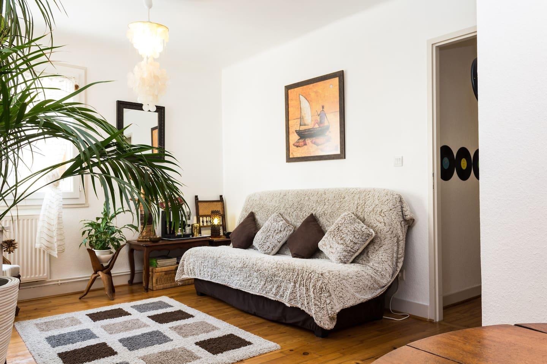 Pièce de vie principale avec canapé- lit