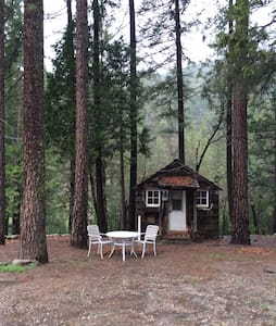 Cute Rustic Cabin in the Woods!  - Cottage