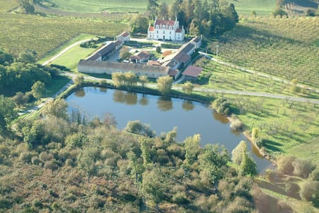 Stunning French Manor - Bed & Breakfast