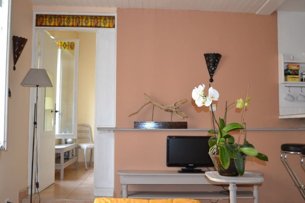 Living room, warm cozy colours, access to bedroom