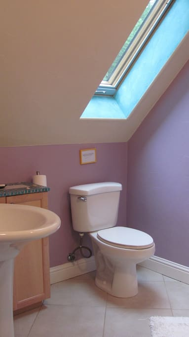 Bright, clean bathroom with plenty of storage and natural light.