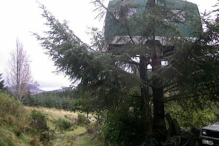 Bogancloch Treehouse - Rhynie - Casa na árvore