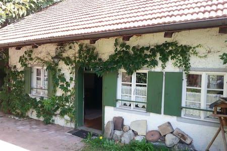 Zauberhaftes Kleinod i.Voralpenland - House