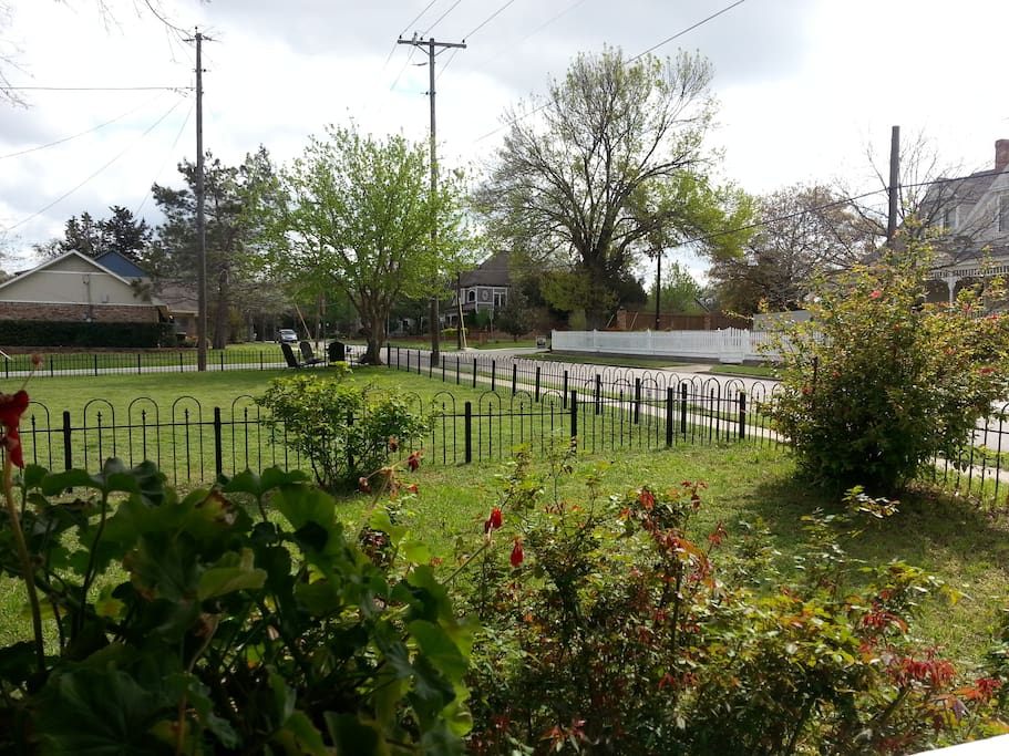 View from Mockingbird front porch.