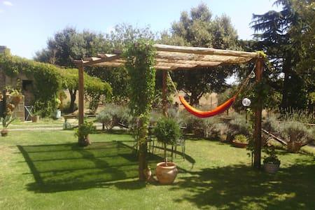Casale Santa Flora - Bed & Breakfast