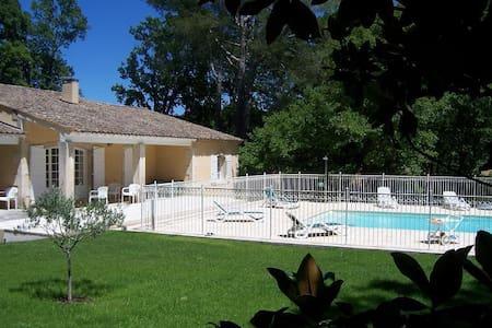 Les chênes blancs - Saint-Rémy-de-Provence
