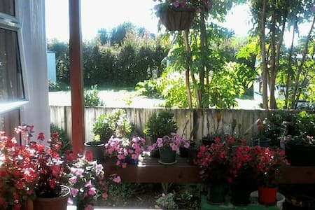 #2 lovely clean peaceful home - Waihi - House