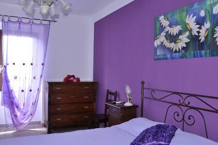 Villa in Abruzzo Countryside - Bed & Breakfast