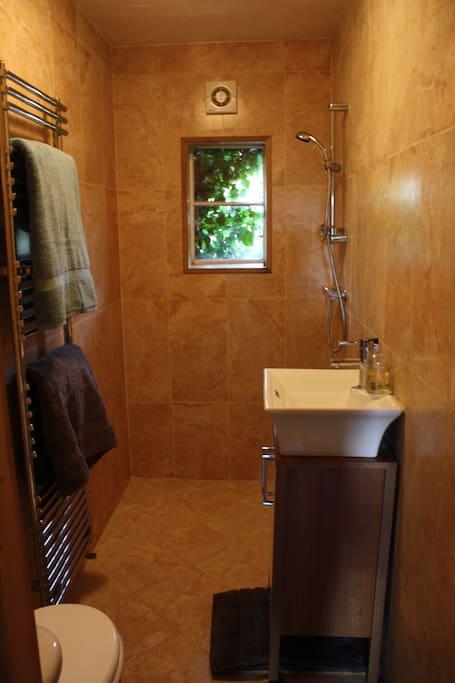 Wet room style bathroom.