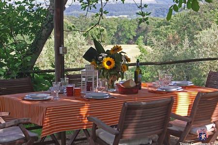 Villa with Pool looking Montalcino - Buonconvento