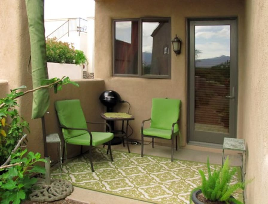 Back Patio with small electric grill