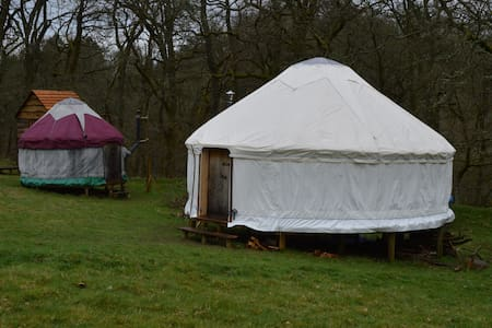 Two Welsh yurts