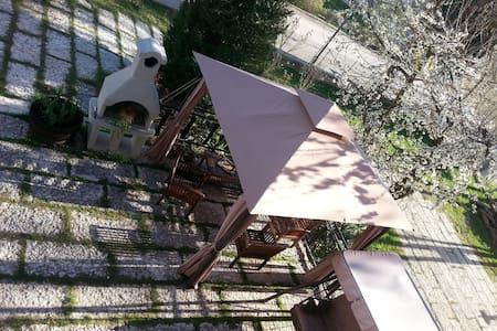 Trentino: giardino e Barbecue free - Tres - Apartmen