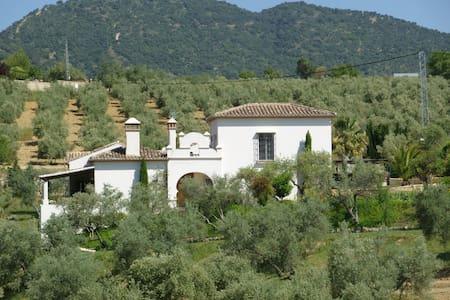 Holiday Villa near Ronda, Spain - Villa
