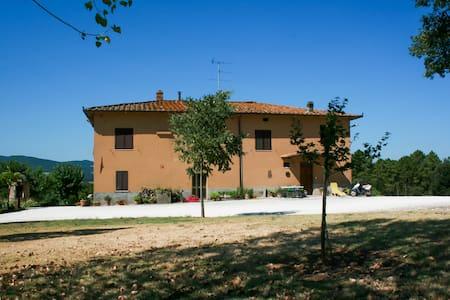 Your Dream Tuscany Vacation - Lägenhet