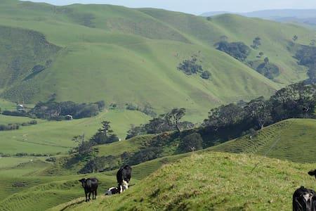 Country Villa close to Auckland - Willa