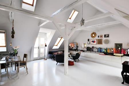 The Architect's Spacious Loft 1