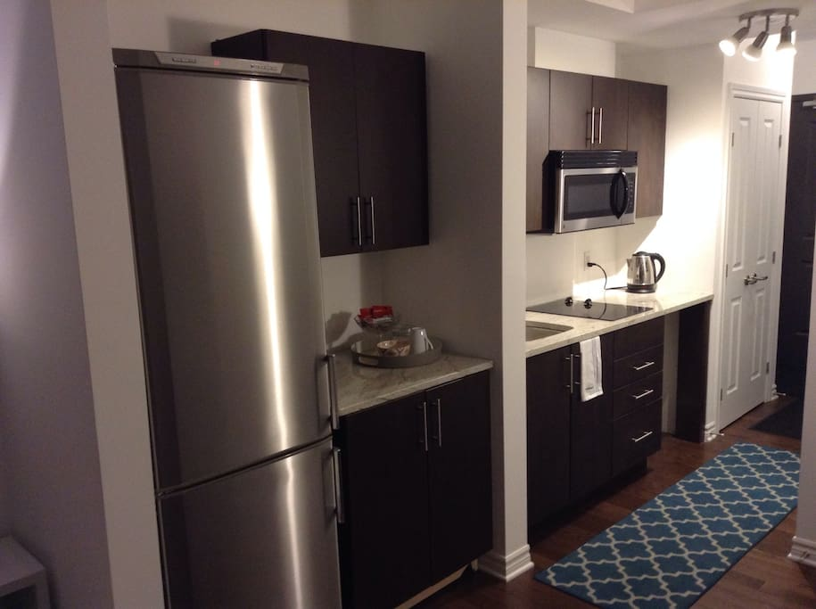 Galley kitchenette with full condo fridge