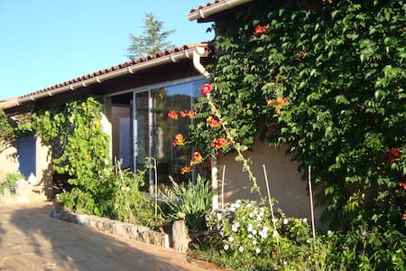 Country house in Provence  - Bed & Breakfast