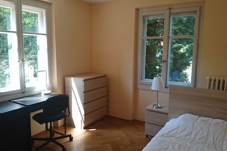 Very nice room in a flat near the center - Petit-Lancy - Appartement