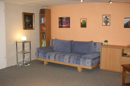 Guestroom in basement - House