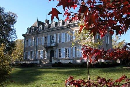 Hilltop Chateau near Toulouse - Slott