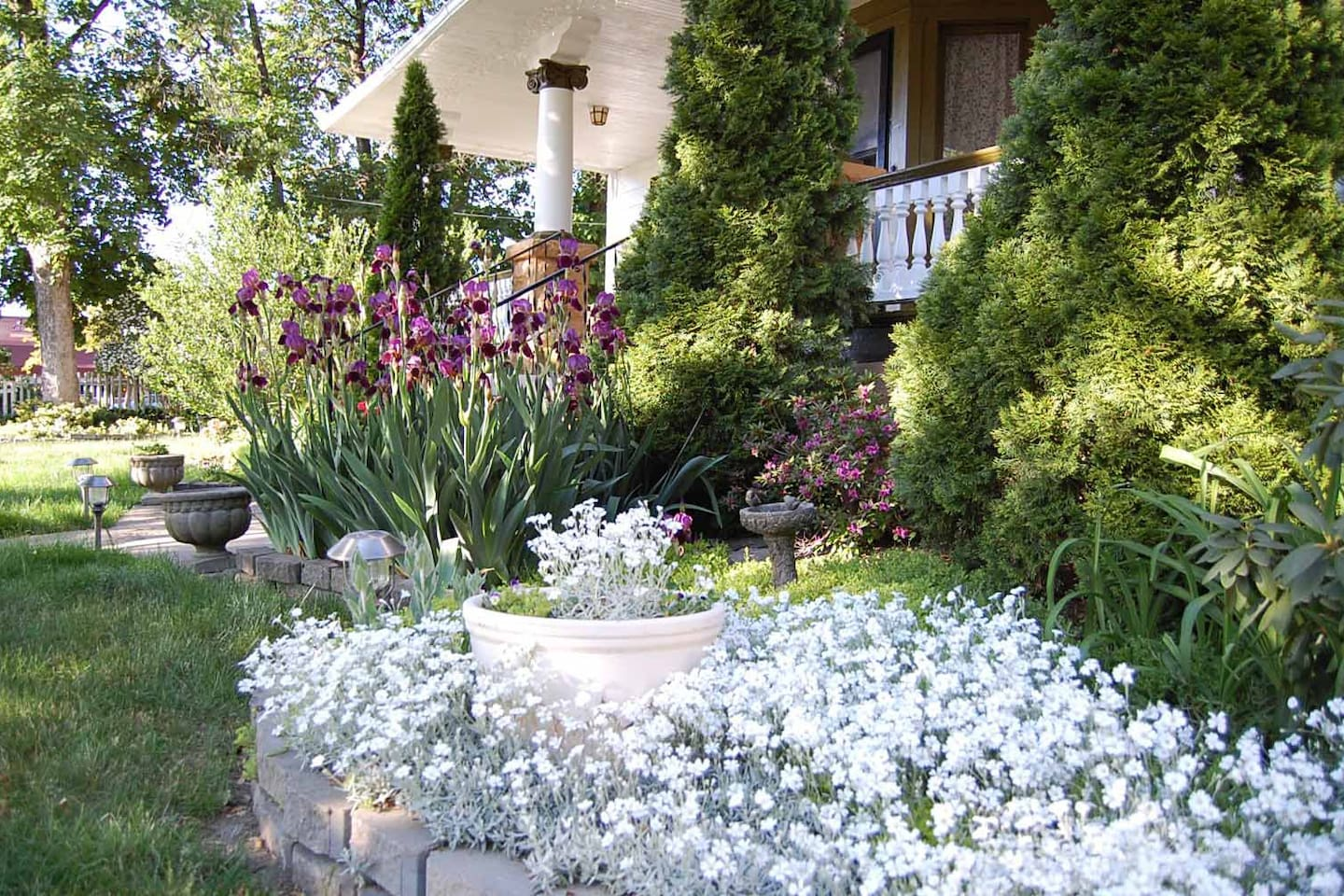 Front yard in spring!