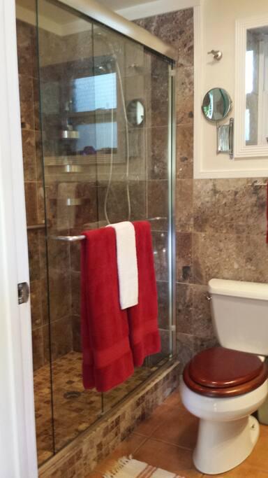 Walk-in Glass Door Shower w/ Handicap Grab Bars.