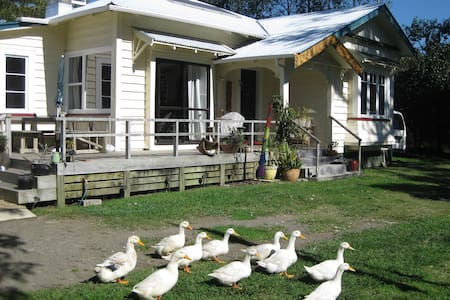 Home-stay Haven - B&B - Opotiki - House