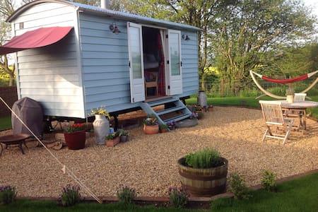 Secluded Shepherds hut in Suffolk - Hut