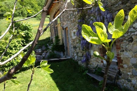 Aux Pierres Tranquilles - Saint-Étienne-de-Crossey - Bed & Breakfast