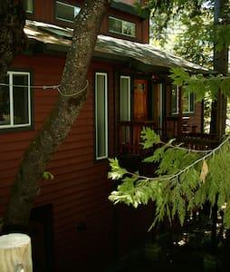 SKI Dodge Ridge - Cold Springs Home - House