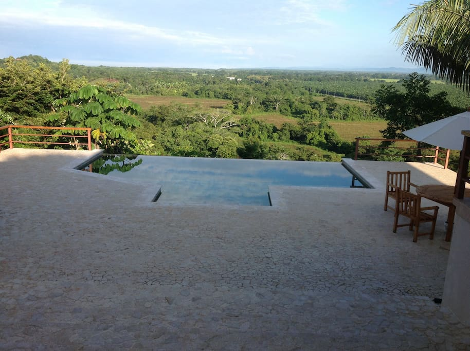 The stunning infinity edged pool and patio area