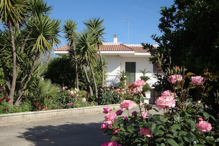 Vacanze Salento vicino ad Otranto - Bed & Breakfast