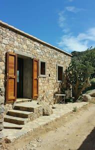 Jolie maison en pierre au calme - Monticello - House