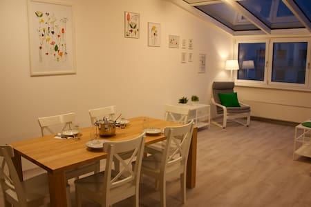 Spacious apartment in Vienna - Wien
