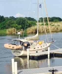Serenity the Sailboat - Tekne