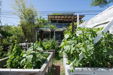 Share ecovillage and our gardens
