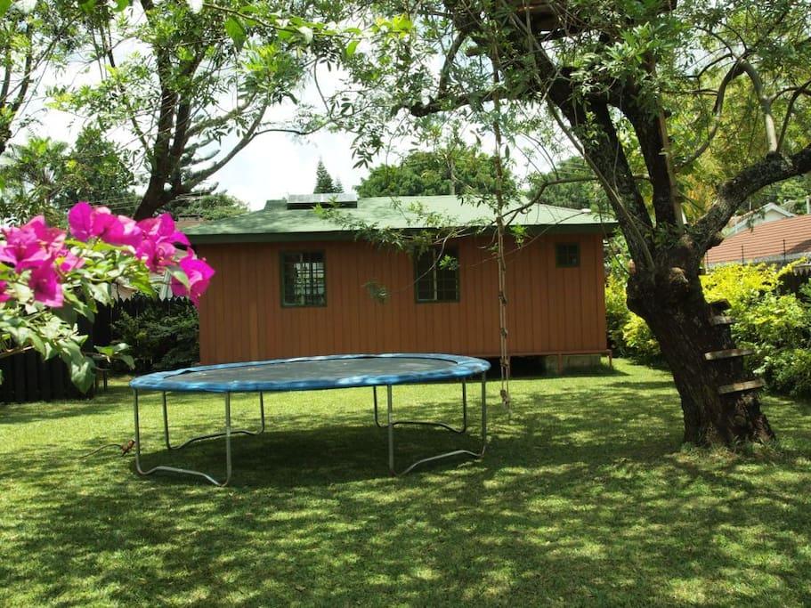 Garden-House/Cabin, view from the Garden