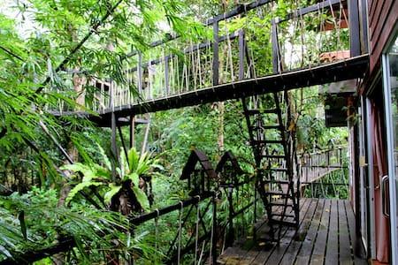 Tarzan Family Treehouse