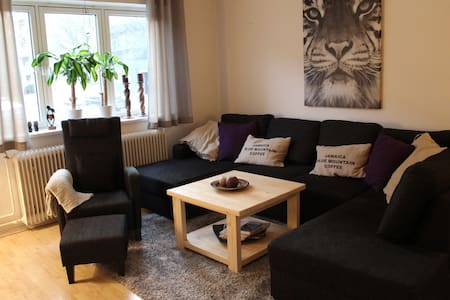 Cosy appartment near downtown - Oslo - Apartment