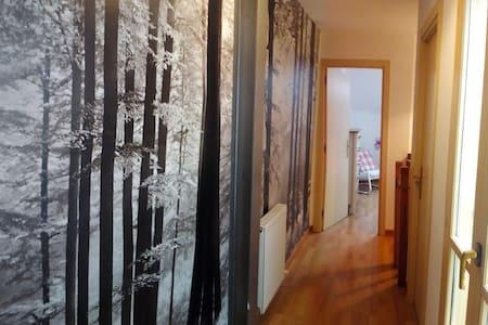 Duplex moderno en el Centro Histórico de Gasteiz. - Apartamento