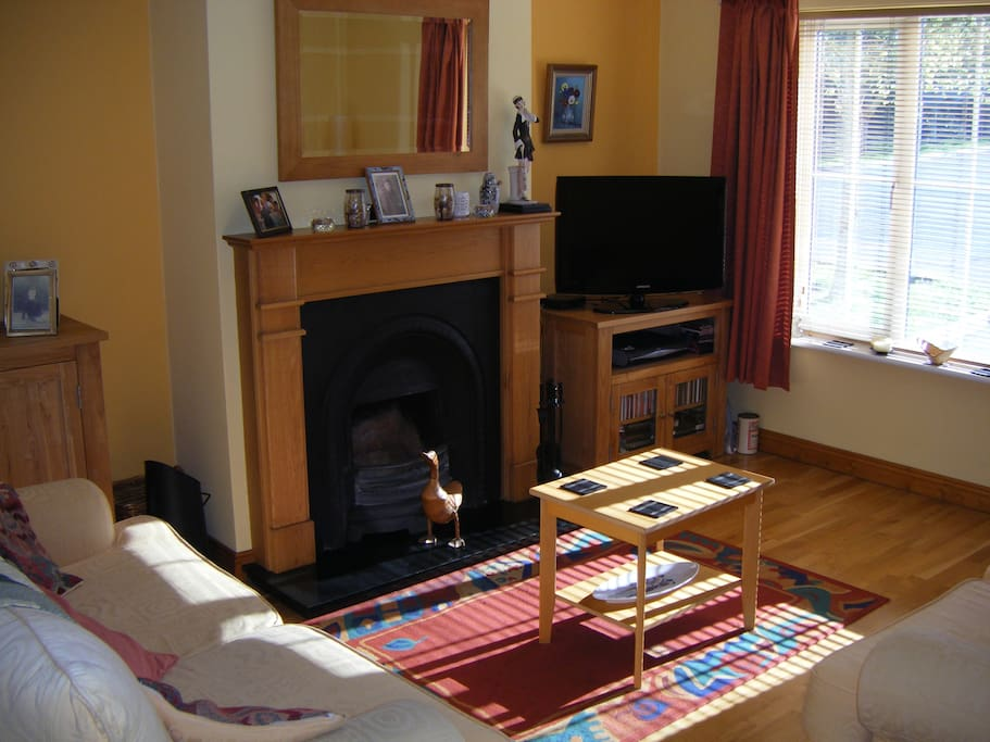 Living room with open fire.