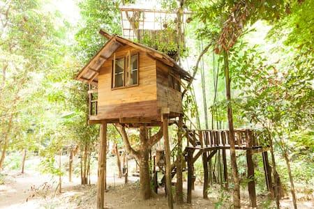 Jackfruit Cottage Treehouse - Hus i træerne