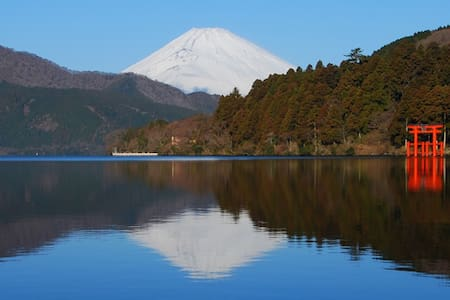Enjoy Hakone with Nature & Onsen ...Ashinoko RM - Dům