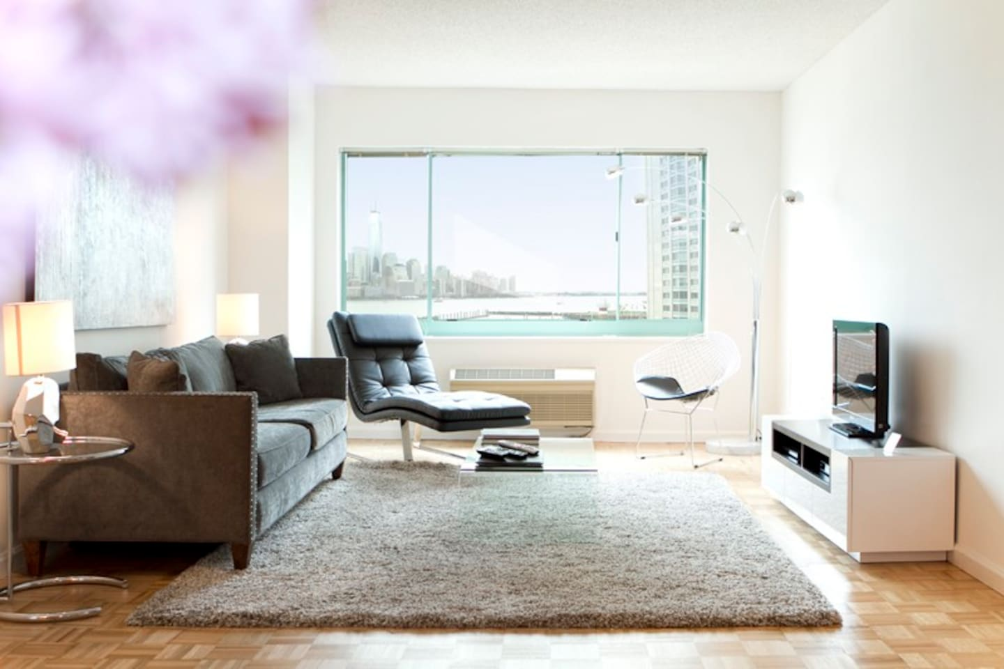 Bright and Sunny Living Room with Queen Size fold-out sofabed and Views of New York City