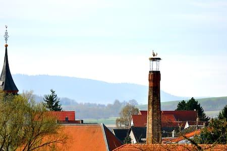 Organic farm near Frankfurt 2 - Kasteel