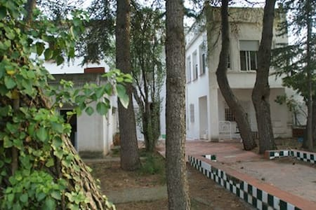 Casa con jardín en la montaña - Chalé