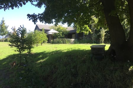 UnderHill Farm. Home in the country - Villiersdorp - House